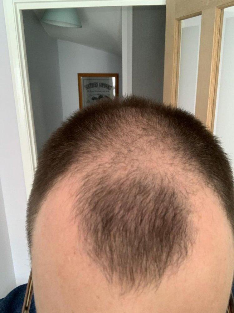 Hair 2-2.jpg